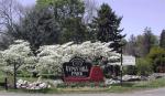 Gypsy Hill Park 1