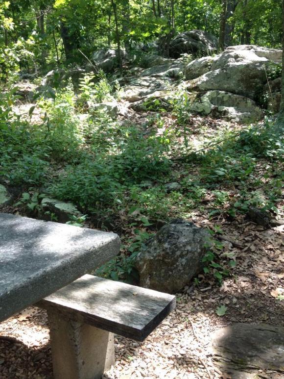Humpback Rock picnic area