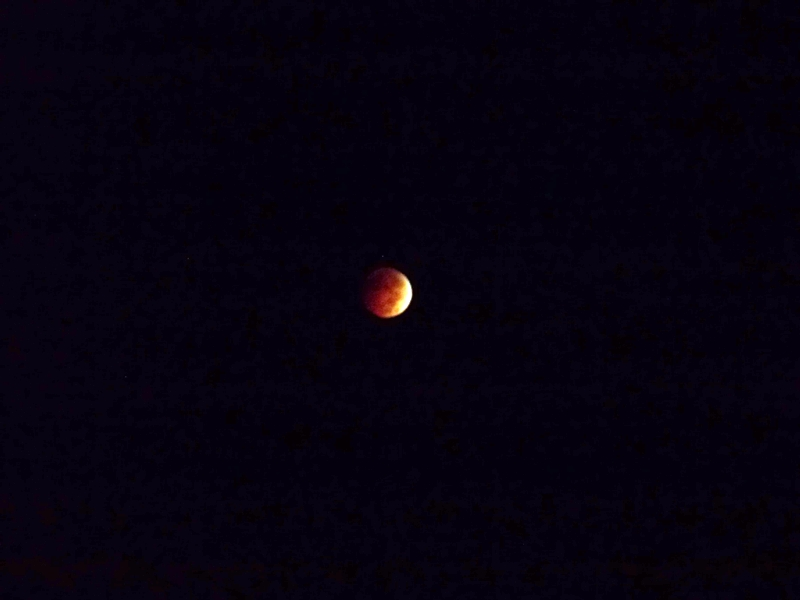 blood moon viewing winnipeg - photo #25