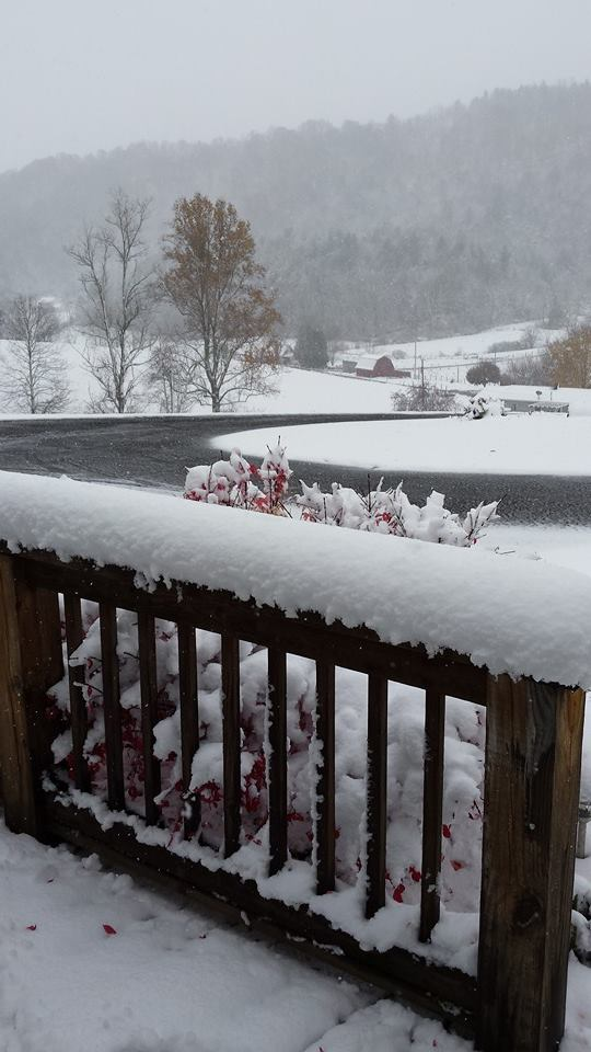Grayson County snow