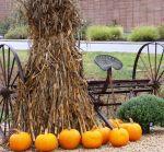 Haystack, pumpkins