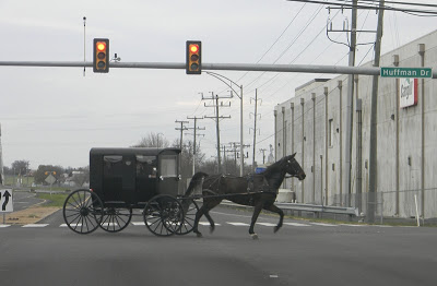 Mennonite horse and buggy