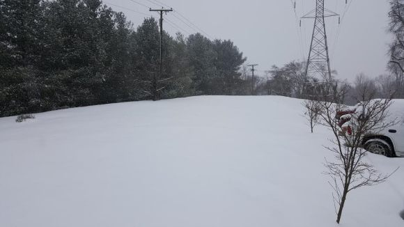 Matt Hall snow 2