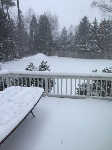 Snow 13 Saxman