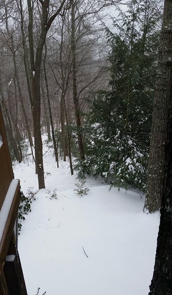 Snow Rhonda 1